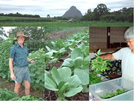 Introducing our organic columnist and and local farmer Les Nicholls