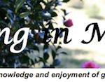 Club: Maleny Garden Club