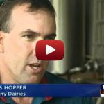 Maleny Dairies Give Local Dairy Farmers A Lifeline Against Supermarket Chains