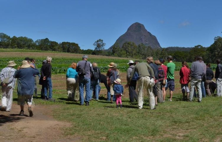 Event: Open Days at Sandy Creek Organic Farm on Saturday,12 October 2013