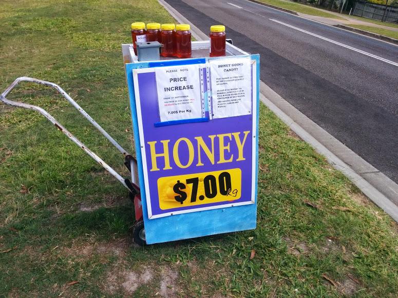 Local Glasshouse Mountains Honey