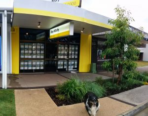 Ray White Real Estate Beerwah and Buster 2014 (A Portrait of Simpson Street in Beerwah on Saturday 8th November 2014)