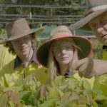 Find out more about the Green Army on the Sunshine Coast